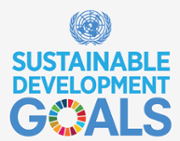 Report presented to UN High Level Policy Forum on localising SDGs
