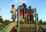 Kids in Alotau enjoying the play ground equipment donated by Noosa community