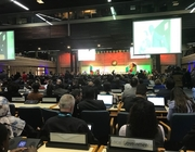 Local government takes its place at UN Habitat Assembly